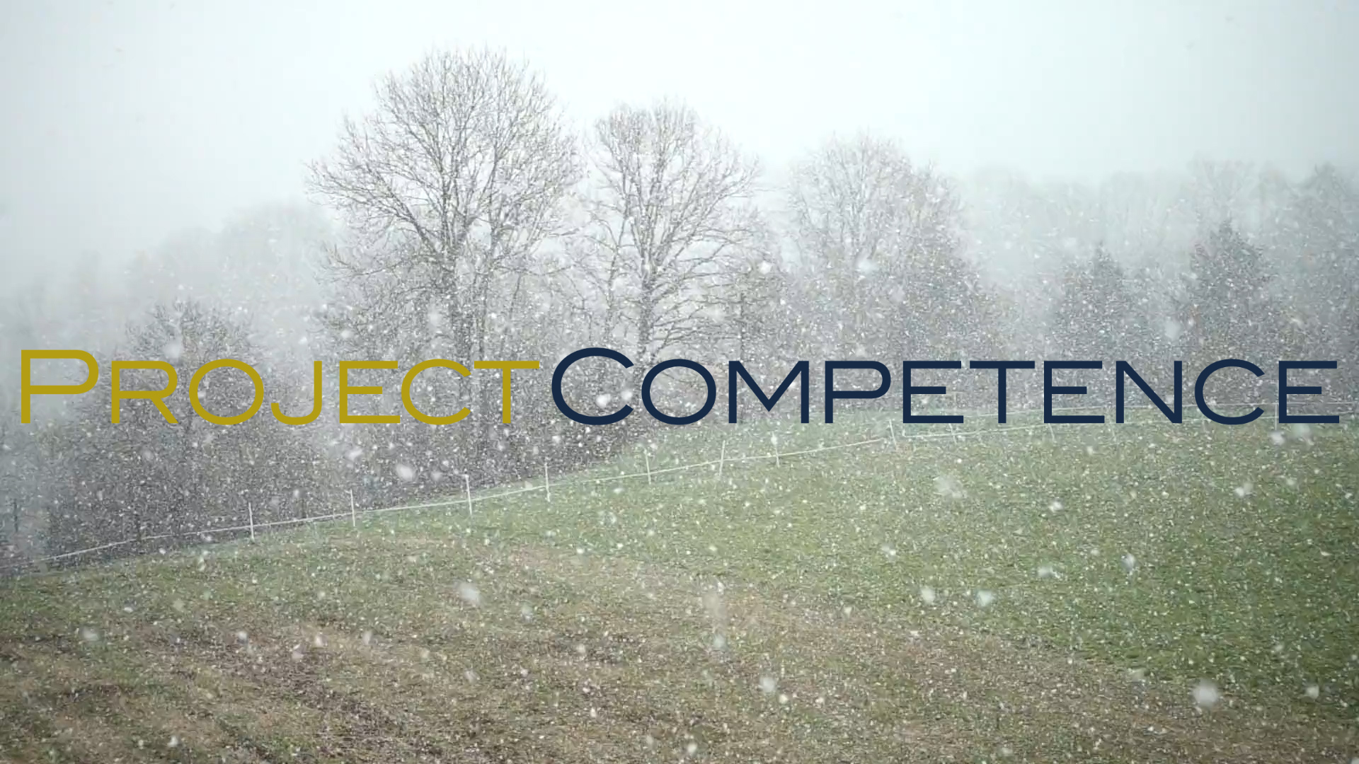 Weihnachts-Gruss 2020 Project Competence